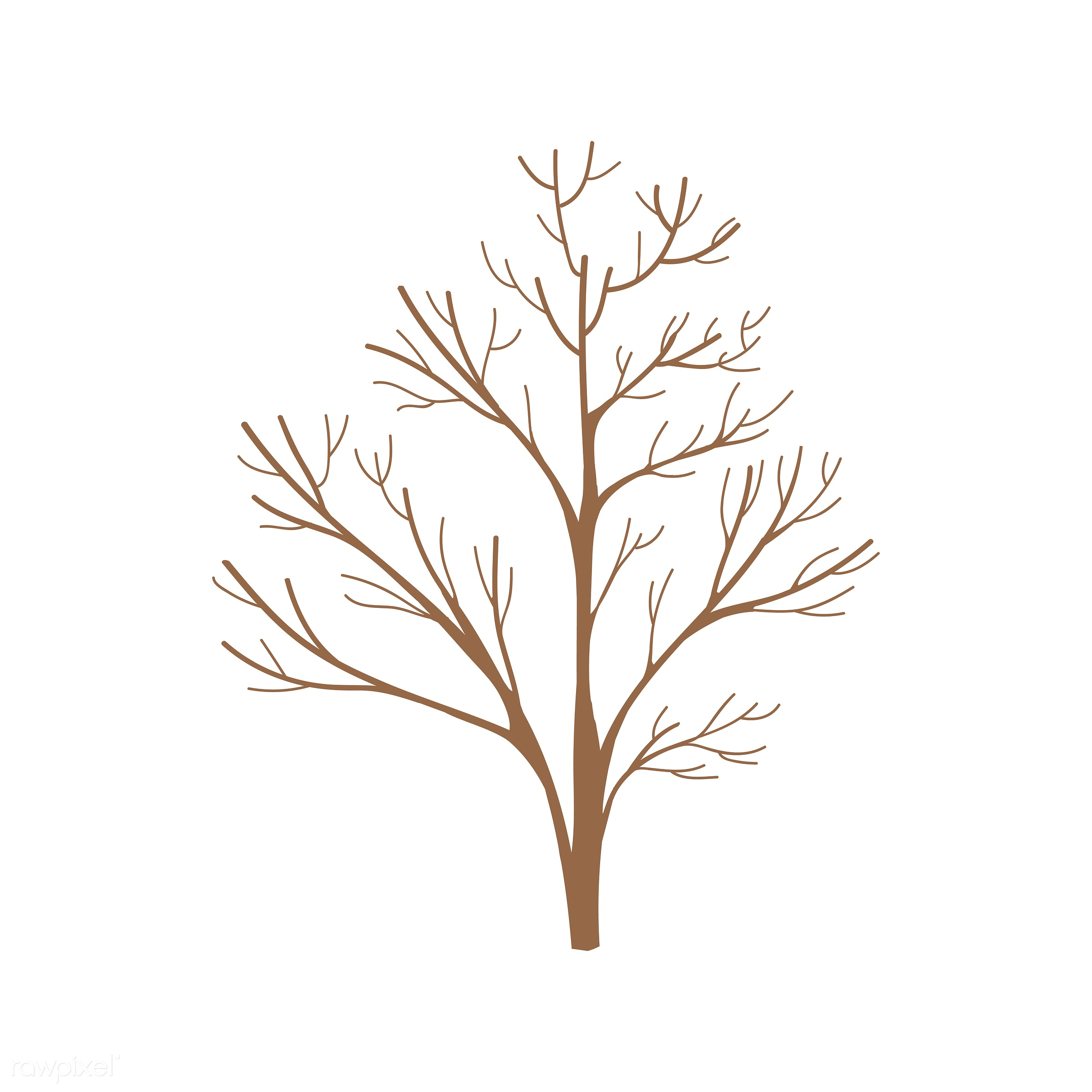 tree, icon, nature, botanical, collection, design, flora, graphic, group, illustration, isolated, leaf, leaves, ornaments,...