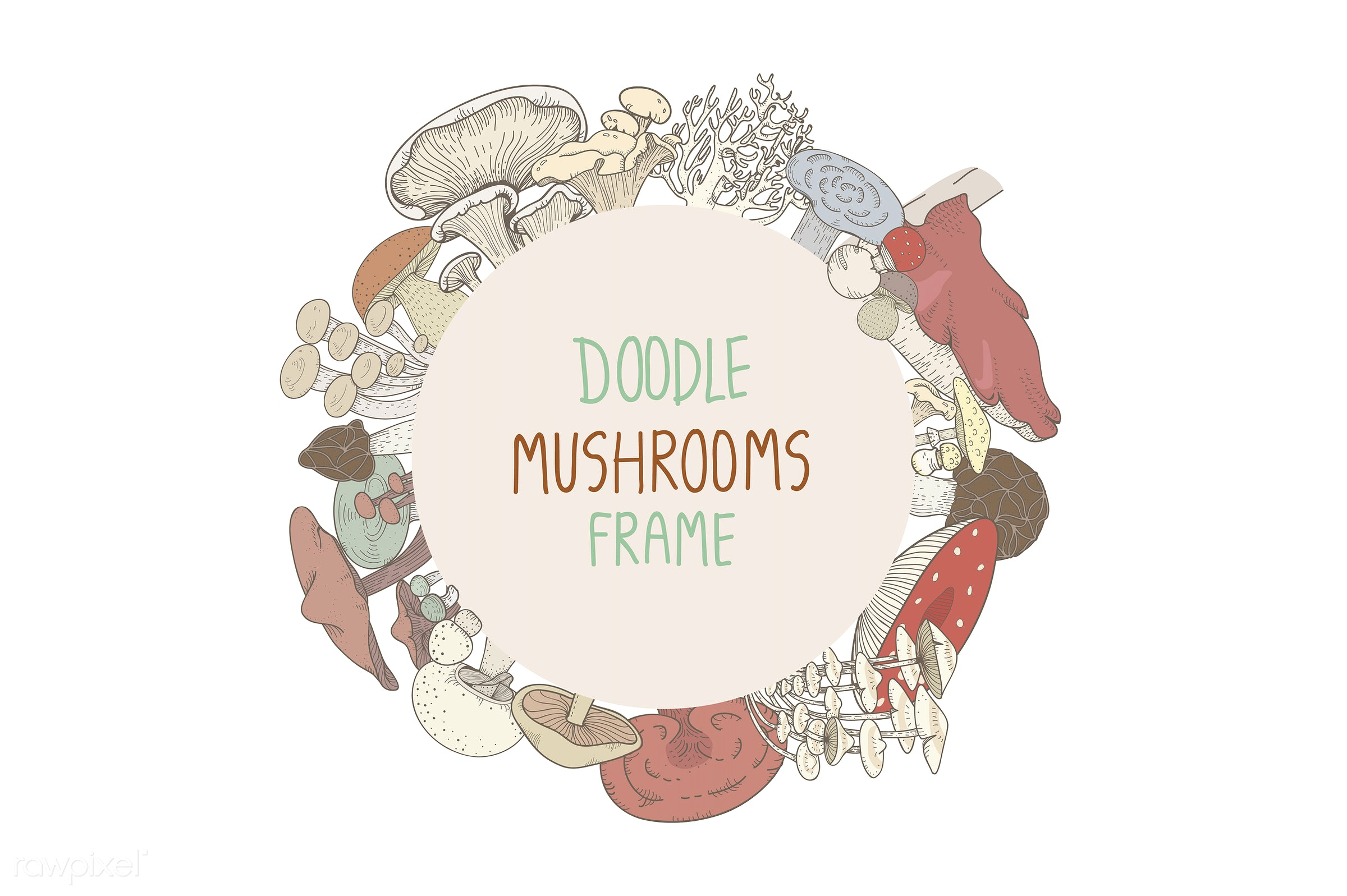 frame, collection, design, doodle, farmers, food, graphic, illustration, isolated, mushrooms, organic, set, vector, vegan,...
