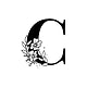Botanical capital letter C vector