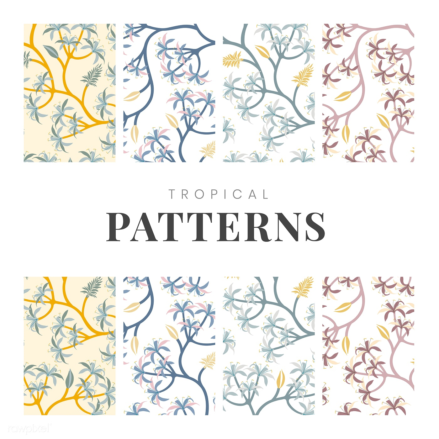 Nature Plant Pattern Design Set Free Vector 563289