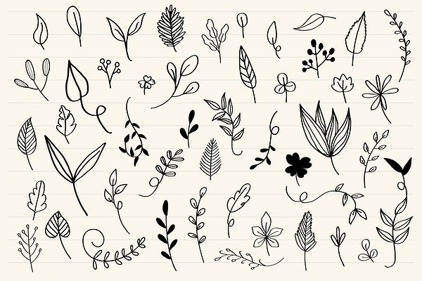 Hand Drawn Leaves Set Royalty Free Vector 580390