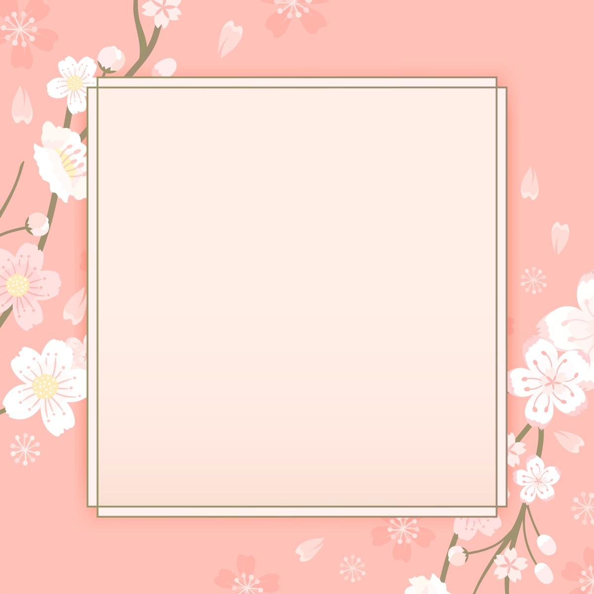 Pink cherry blossom framed vector