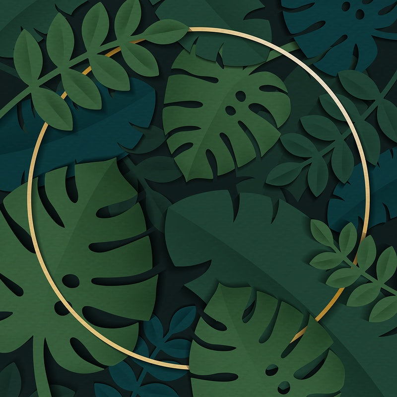 Tropical Leaves Frame Ptm images purdue boilermakers raz imports regal art & gift roman roman inc room essentials roommates round top collection safavieh san francisco 49ers san francisco. download premium vector of round gold frame on a dark green tropical