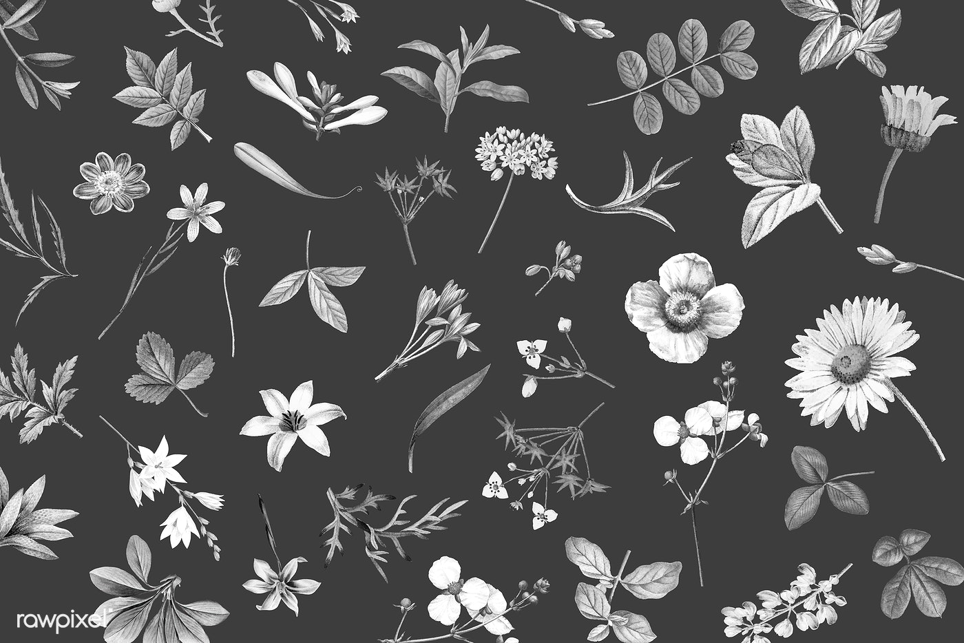 Floral Background Illustration Royalty Free Vector 1201086