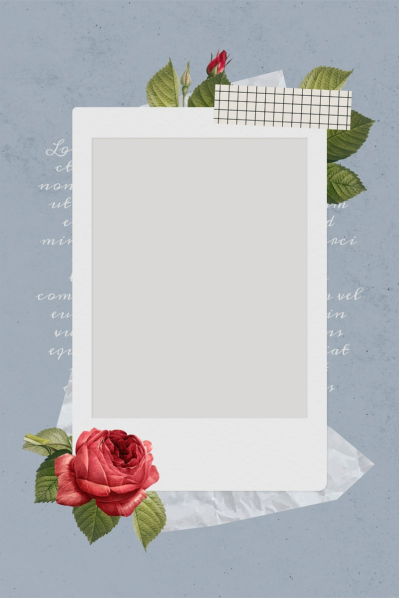 Blank collage photo frame template on gray background vector