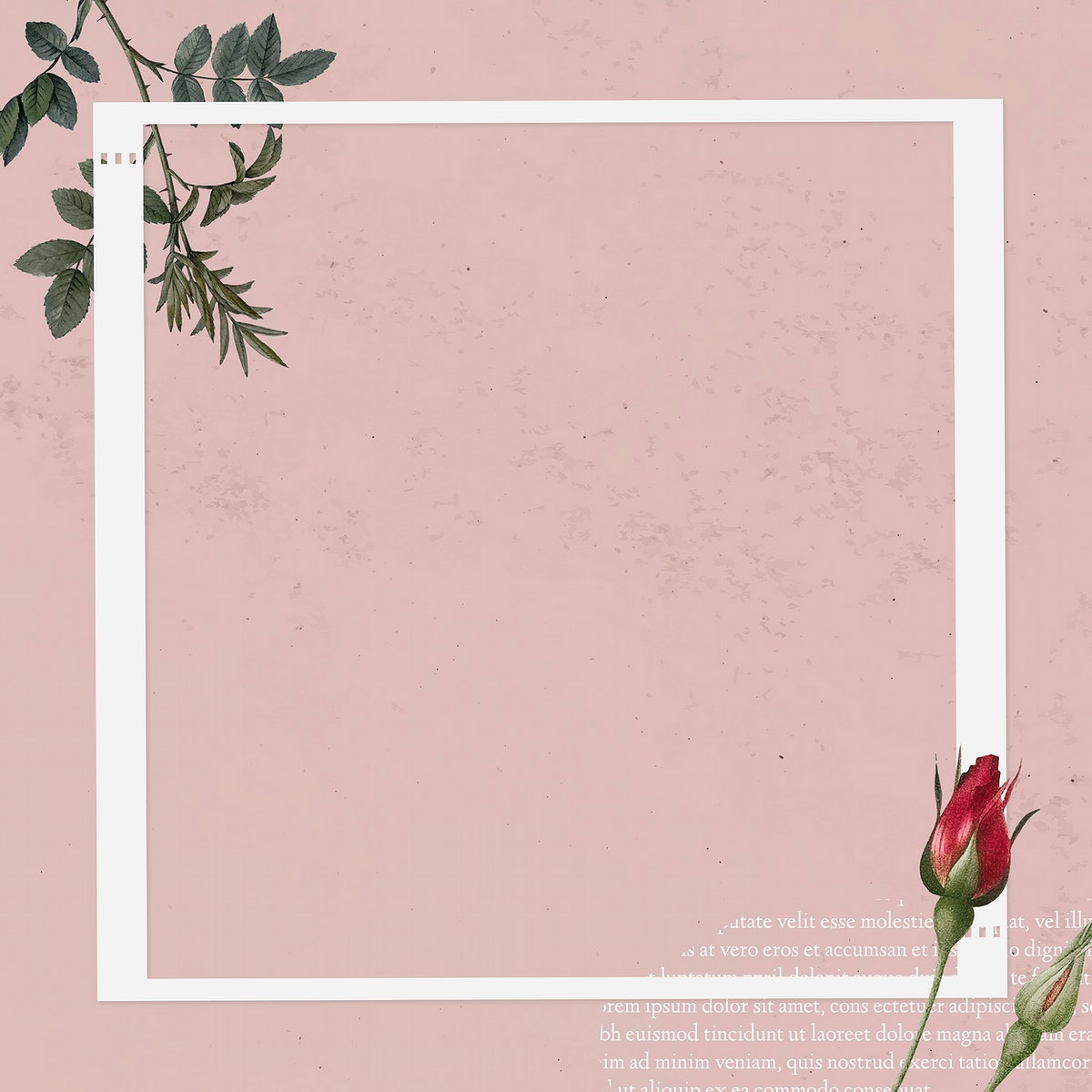 Blank collage photo frame template on pink background vector