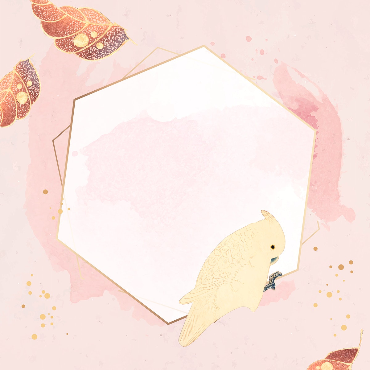 Hexagonal gold frame with a macaw and leaf motifs on a pastel pink background vector