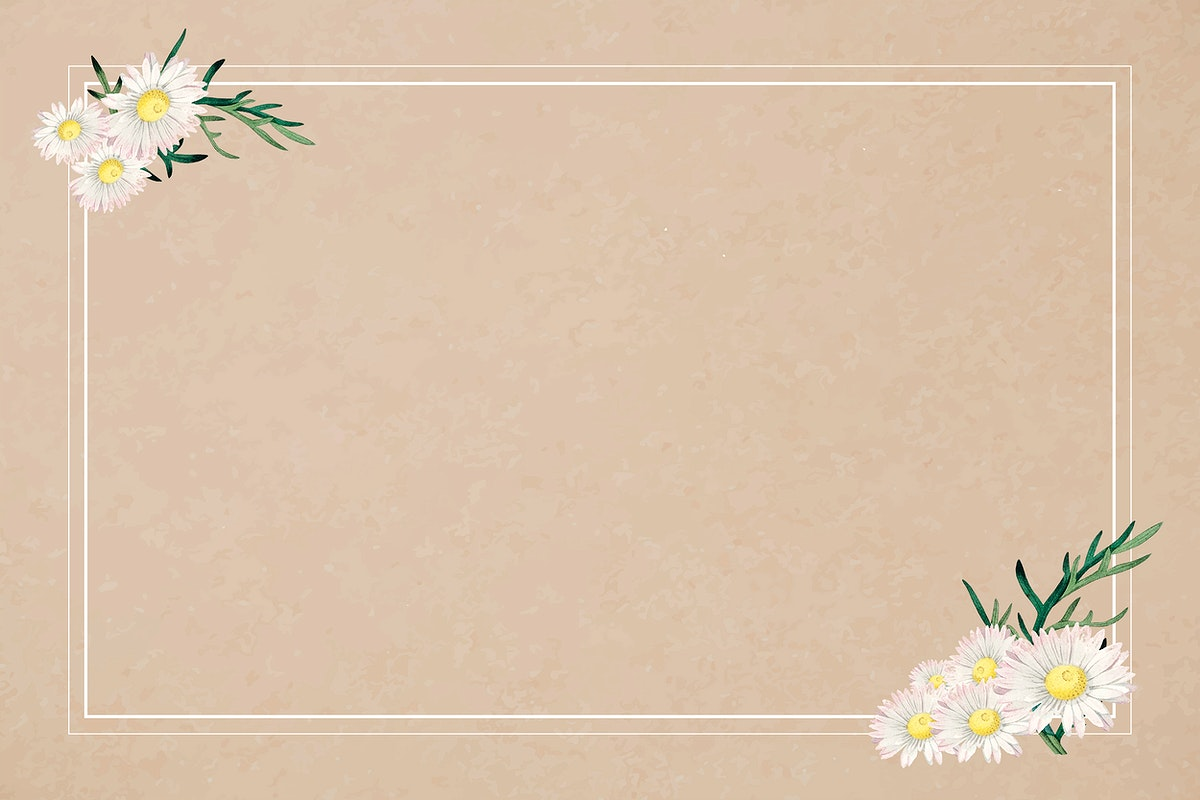 White daisy on a frame on brown background vector