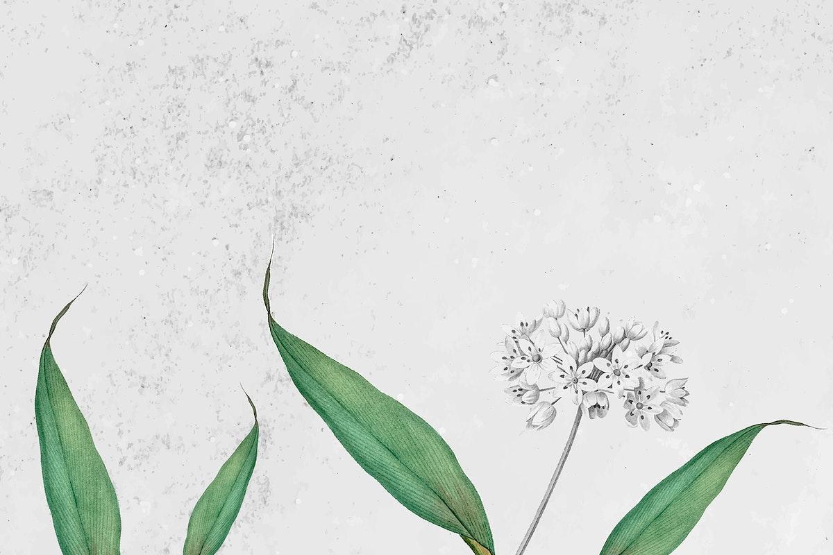 Spring garlic pattern on a grunge gray background vector