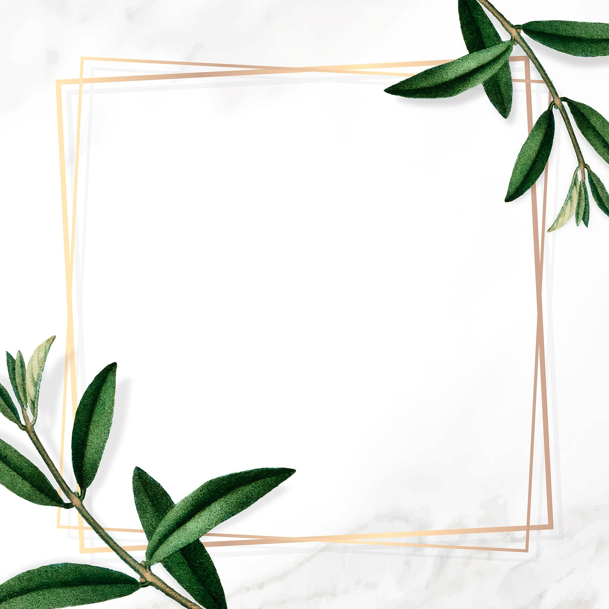 Gold frame with green leaves on white background vector
