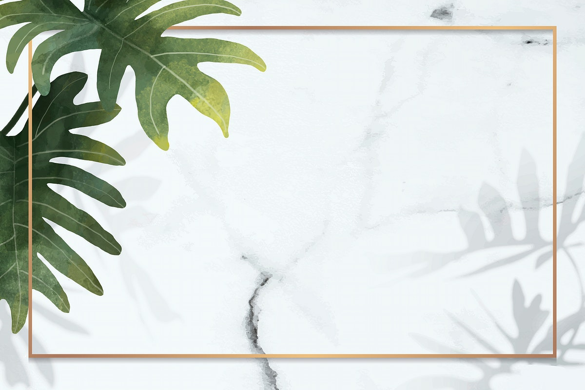 Gold frame with philodendron radiatum leaf pattern on white marble background vector