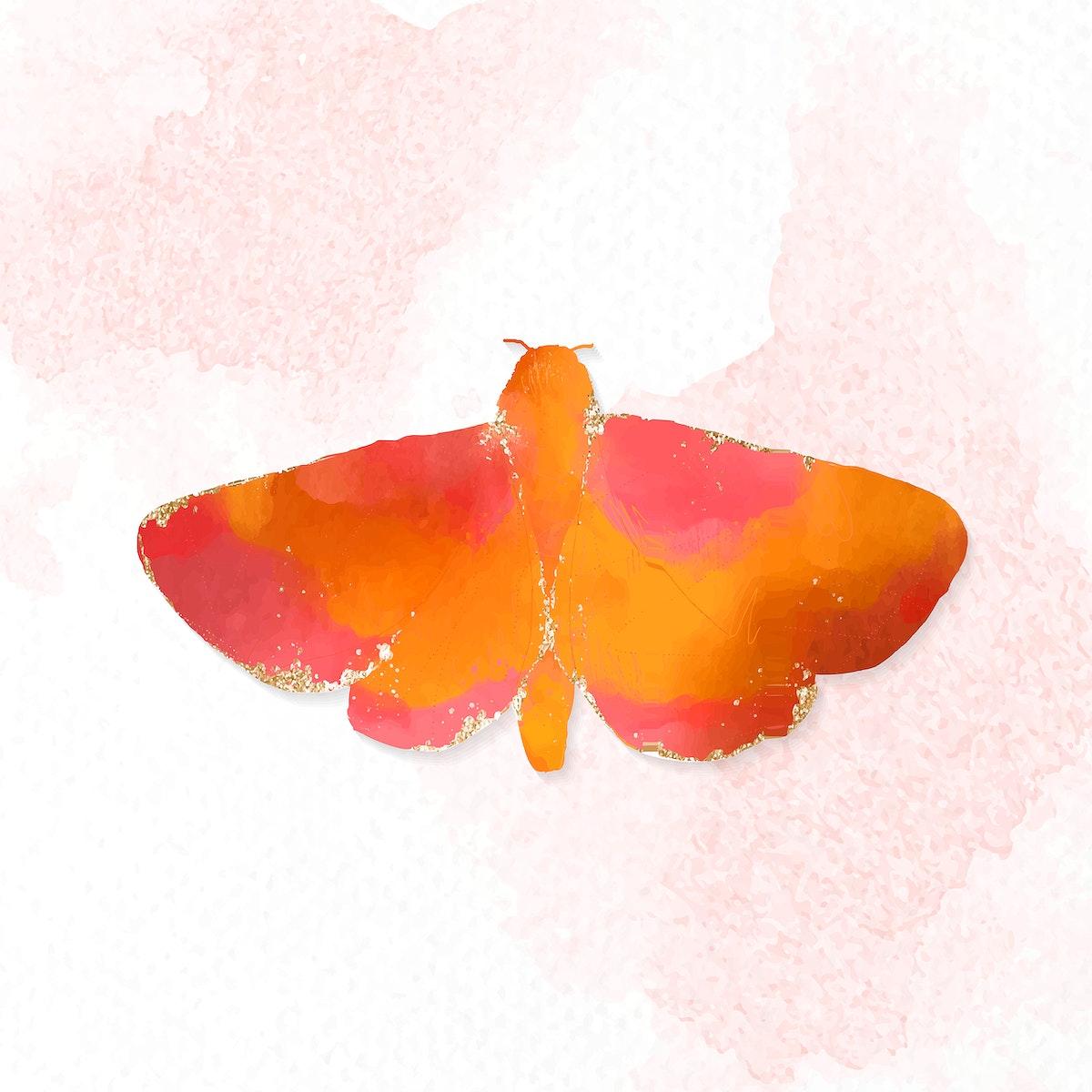 Cute watercolor moth vector