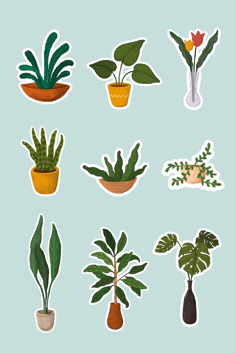 Indoor plants sticker collection vector
