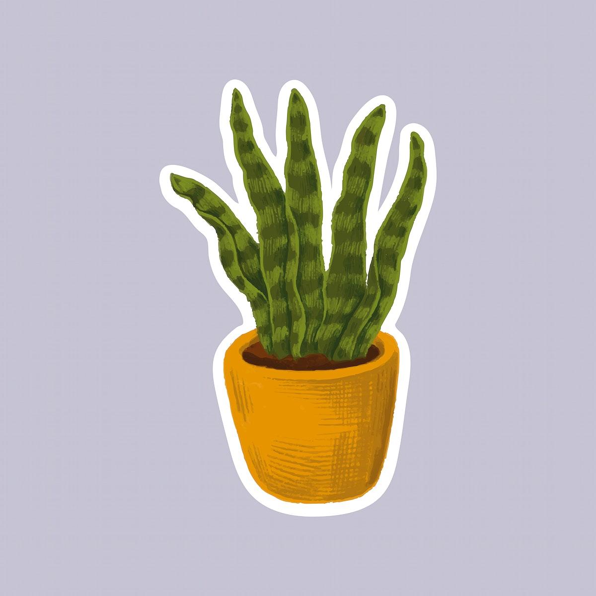 Snake plant in a pot sticker