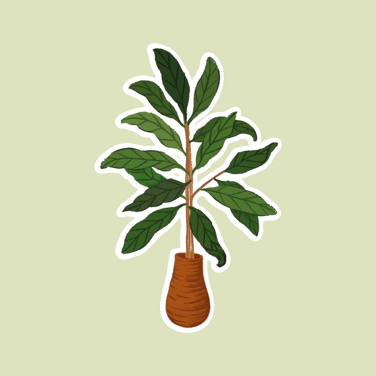 Indoor plants sticker vector