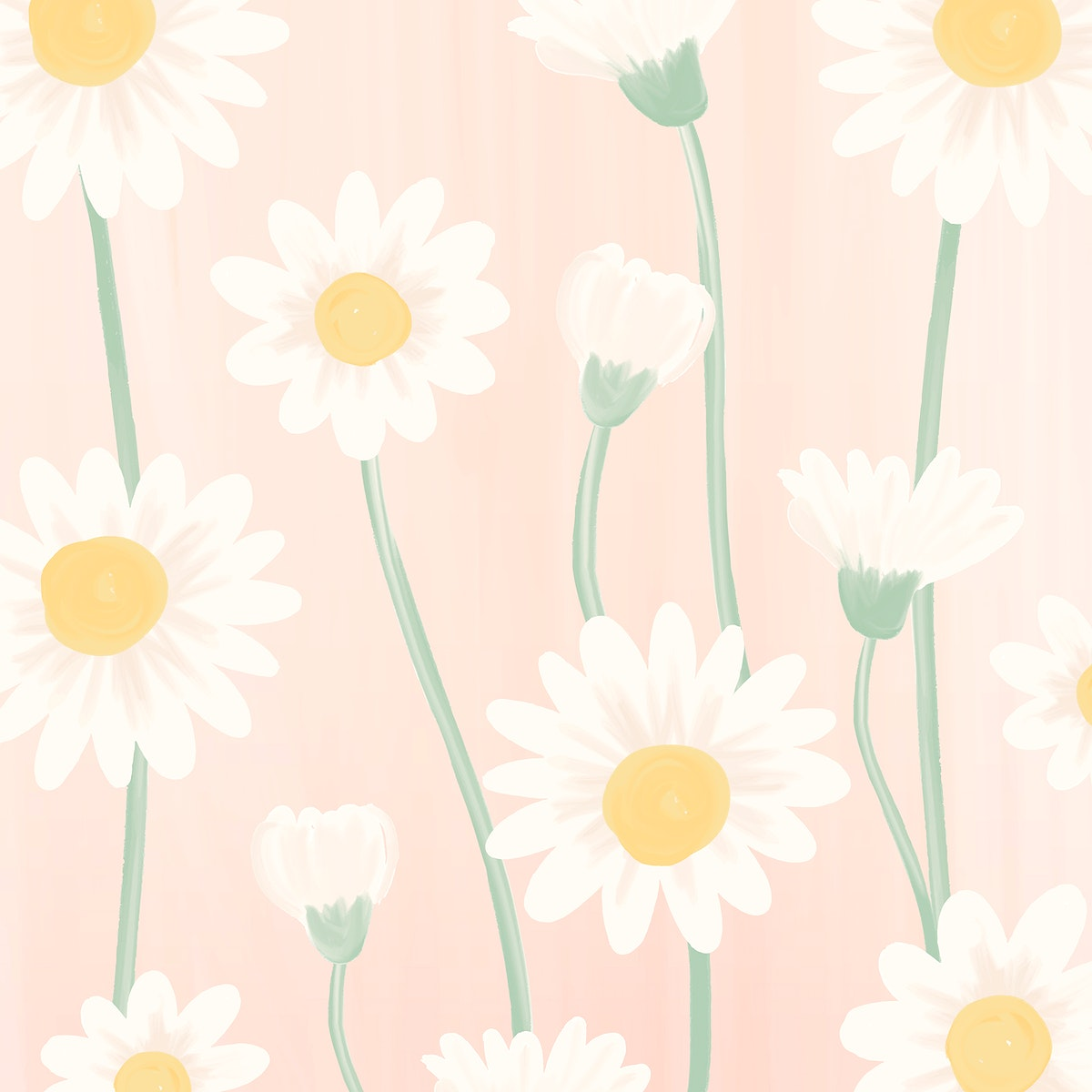 Hand drawn daisy patterned background vector