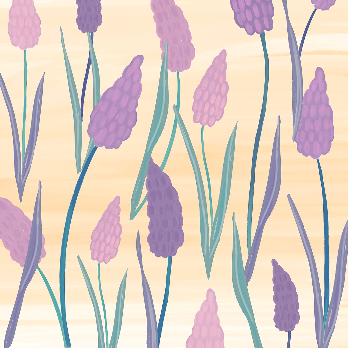 Hand drawn grape hyacinth patterned background vector