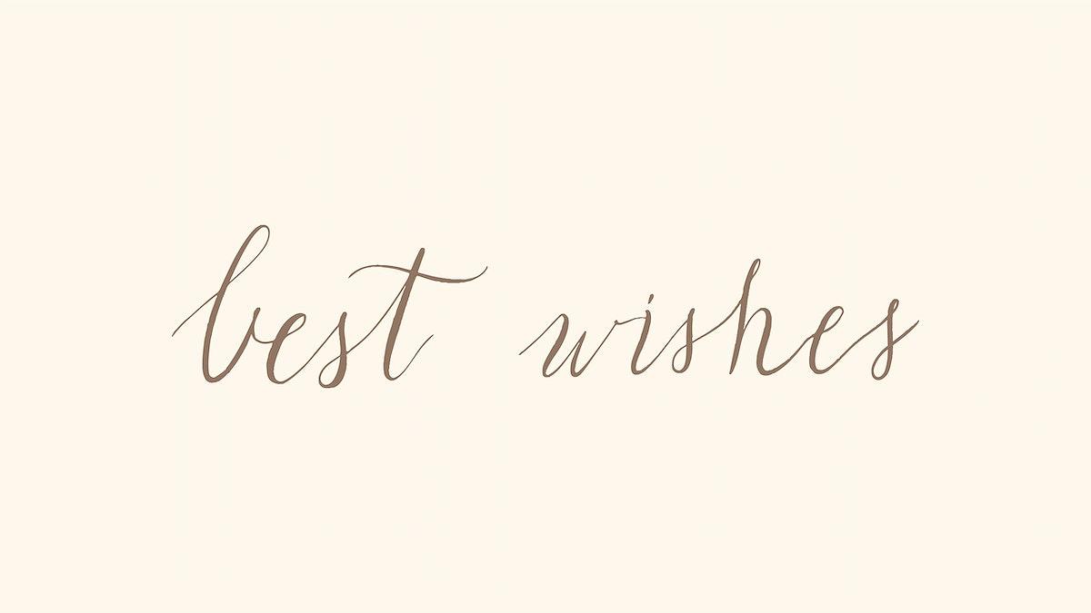 Handwritten style of best wishes typography vector