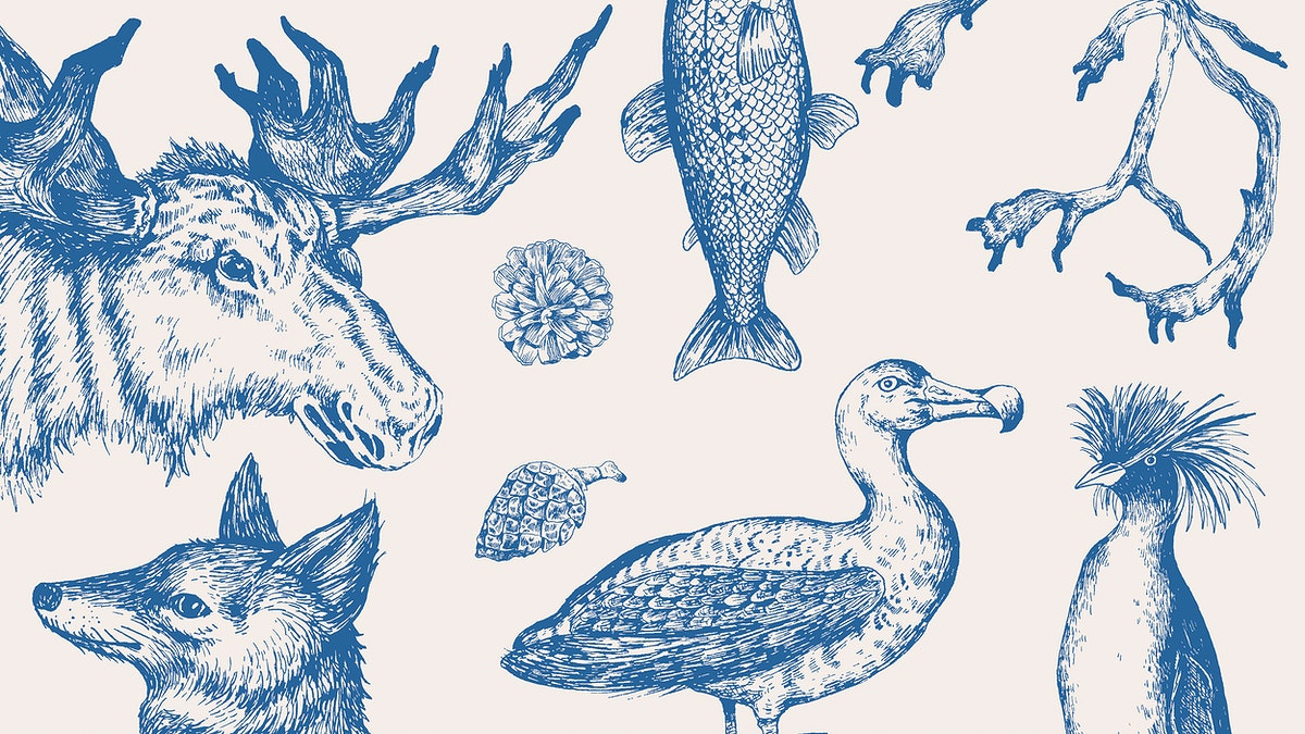 Animal drawing collection in grayscale wallpaper vector