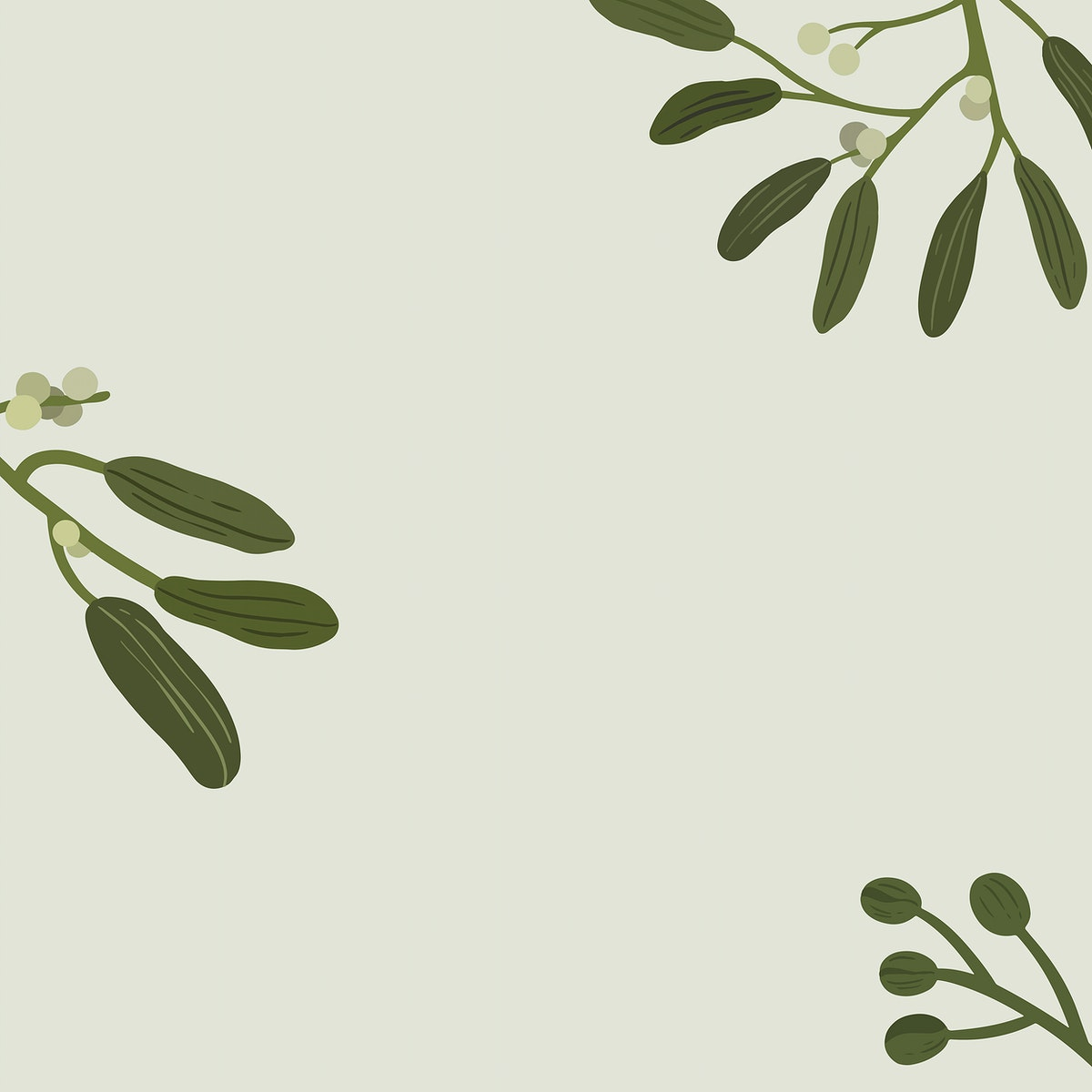 Botanical flower copy space on a gray background