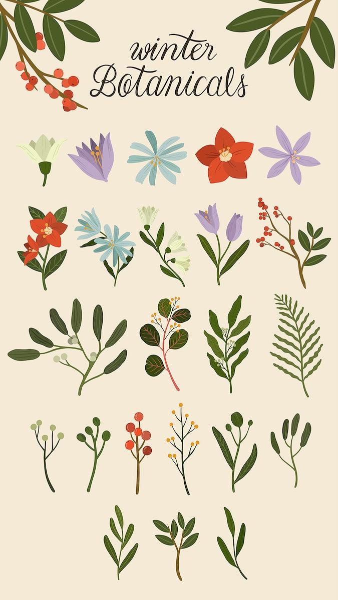 Winter botanicals on a beige phone background illustration