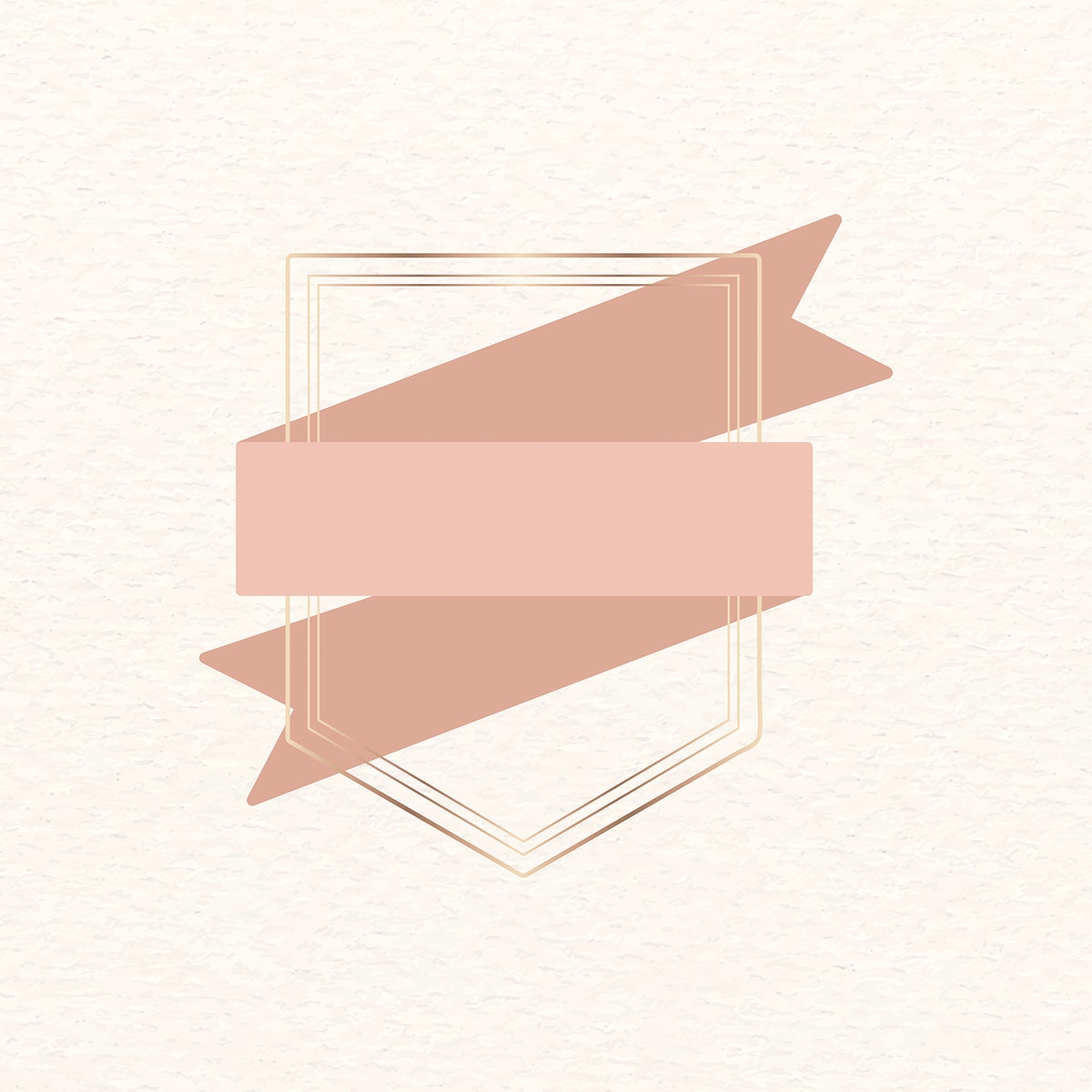 Gold frame with copper ribbon banner vector