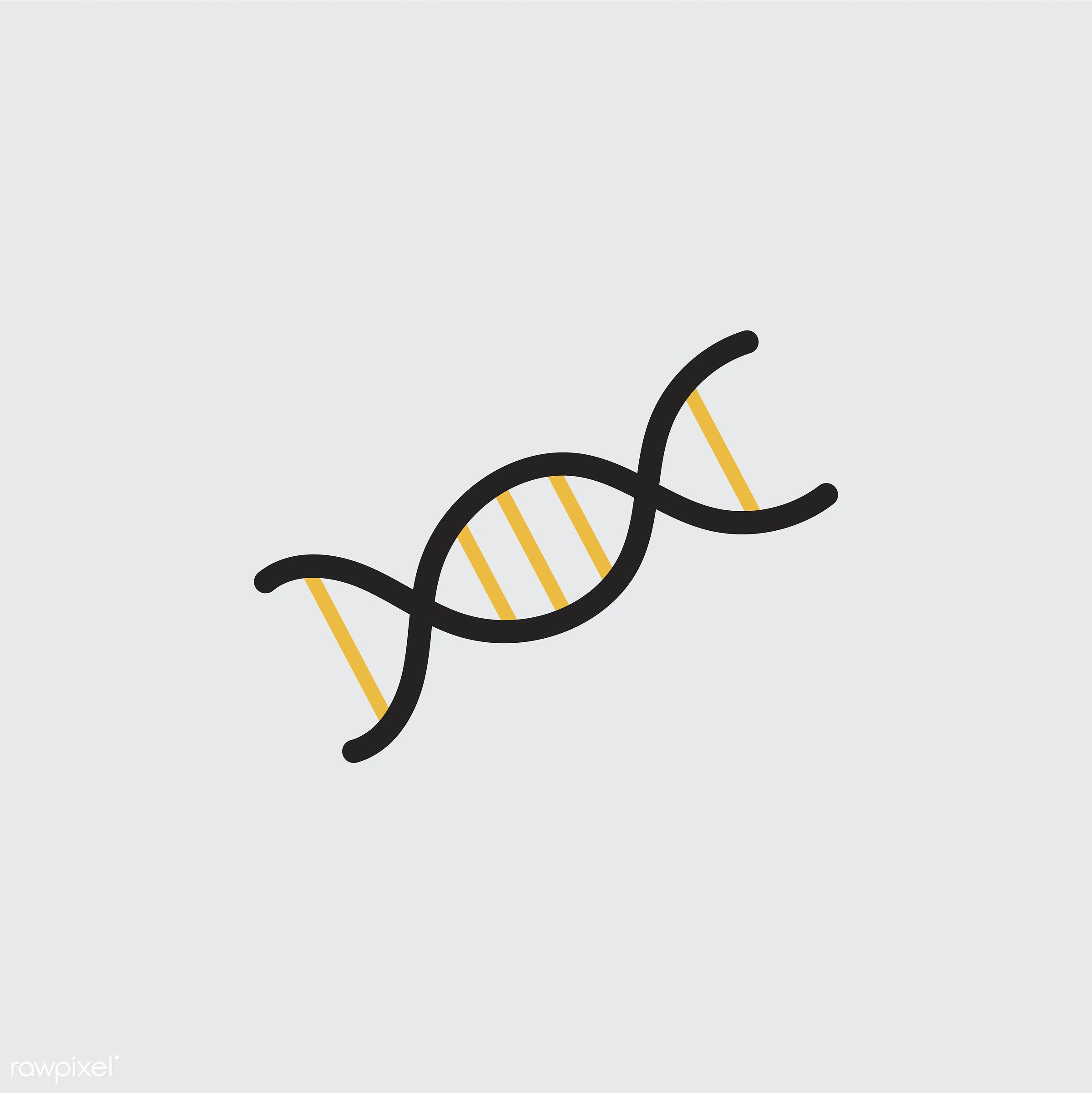 Illustration of DNA double helix - biological, biology, chain, chemistry, chromosome, class, code, design, dna, double,...