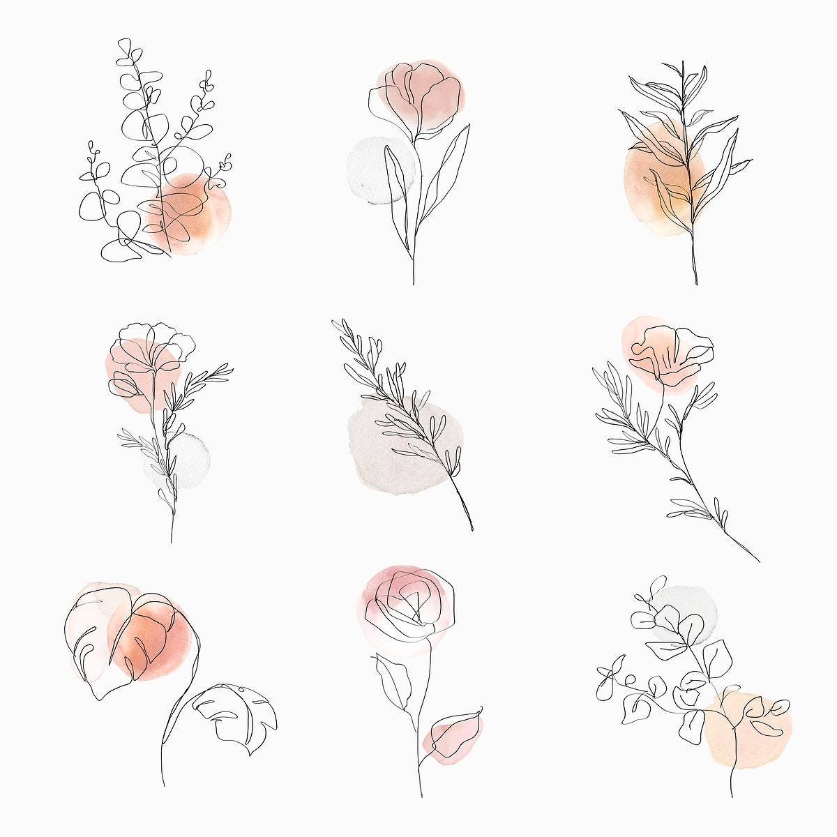 Flowers line art psd botanical watercolor minimal illustration set